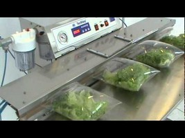 Seladora a vácuo para verduras